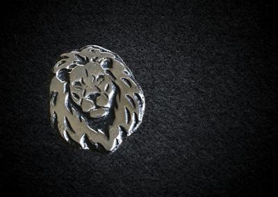 little-lion-face